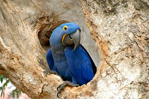 TOP 10: Skarby natury w Ameryce Łacińskiej
