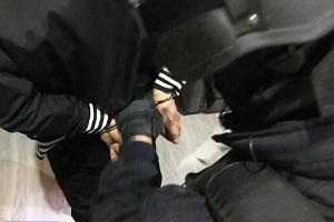 Wpadł gang złodziei TIR-ów. Jego członkowie ukradli dziesiątki pojazdów i sprowadzili je do Polski