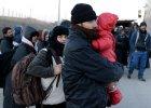 Uchodźcy na greckiej wyspie Kos