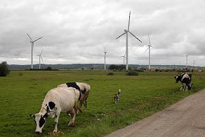 Branża wiatraków kusi dopłatami do prądu i obligacjami
