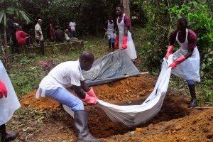 Ebola odbiera Afrykanom prac�