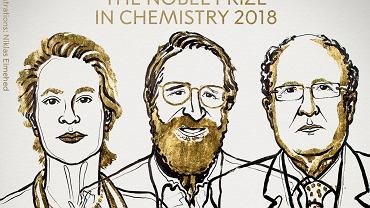 Frances H. Arnold oraz George P. Smith i Gregory P. Winter zostali laureatami Nagrody Nobla w dziedzinie chemii