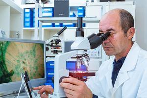 Patomorfolog. Co to za specjalista i czym się zajmuje?