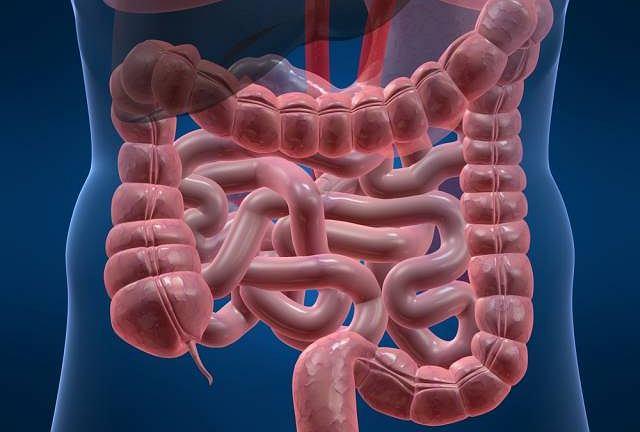 Rzekomobłoniaste zapalenie jelit najczęściej wywołane jest zakażeniem bakteryjnym lub długim przyjmowaniem antybiotyków