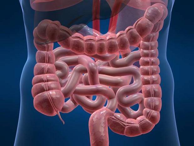 Rzekomob�oniaste zapalenie jelit - objawy, diagnoza, leczenie