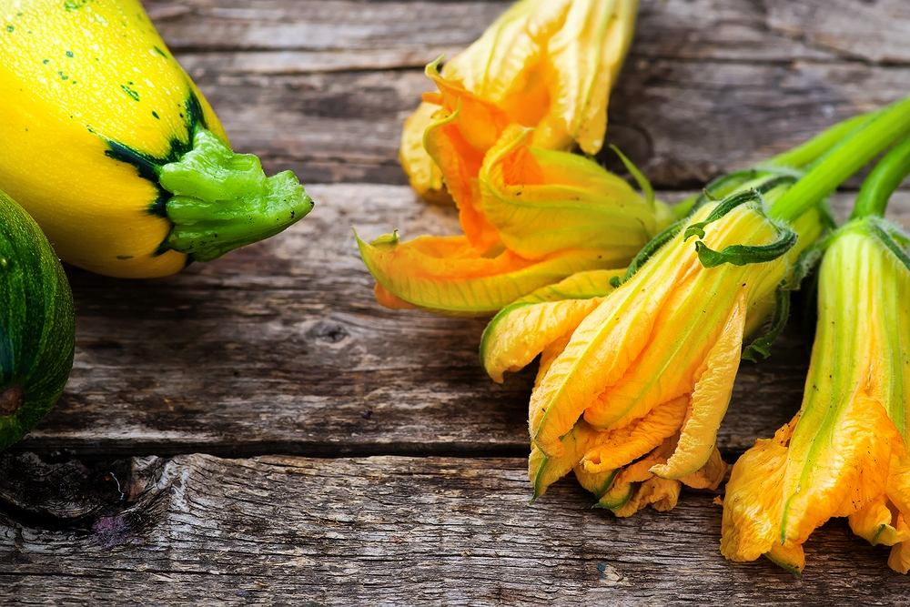 Kwiaty cukinii