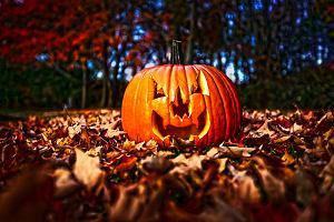 Sk�d si� wzi�o i po co nam Halloween? 10 fakt�w na temat kontrowersyjnej tradycji
