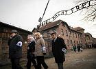 Wi�niowie Auschwitz: Dop�ki si� starczy, b�dziemy tu przyje�d�a�