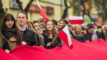 Tak Święto Niepodległości obchodzili uczniowie ZSO nr 7