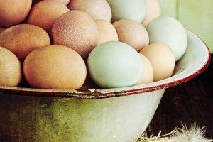 11 powod�w, dla kt�rych warto je�� jajka