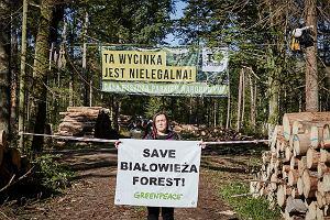 Aktywiści zablokowali wywóz drewna z Puszczy Białowieskiej