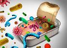 Bakteria Clostridium: gatunki, występowanie i choroby