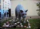 13 nieoczywistych miejsc, które warto zobaczyć we Wrocławiu [ZDJĘCIA]