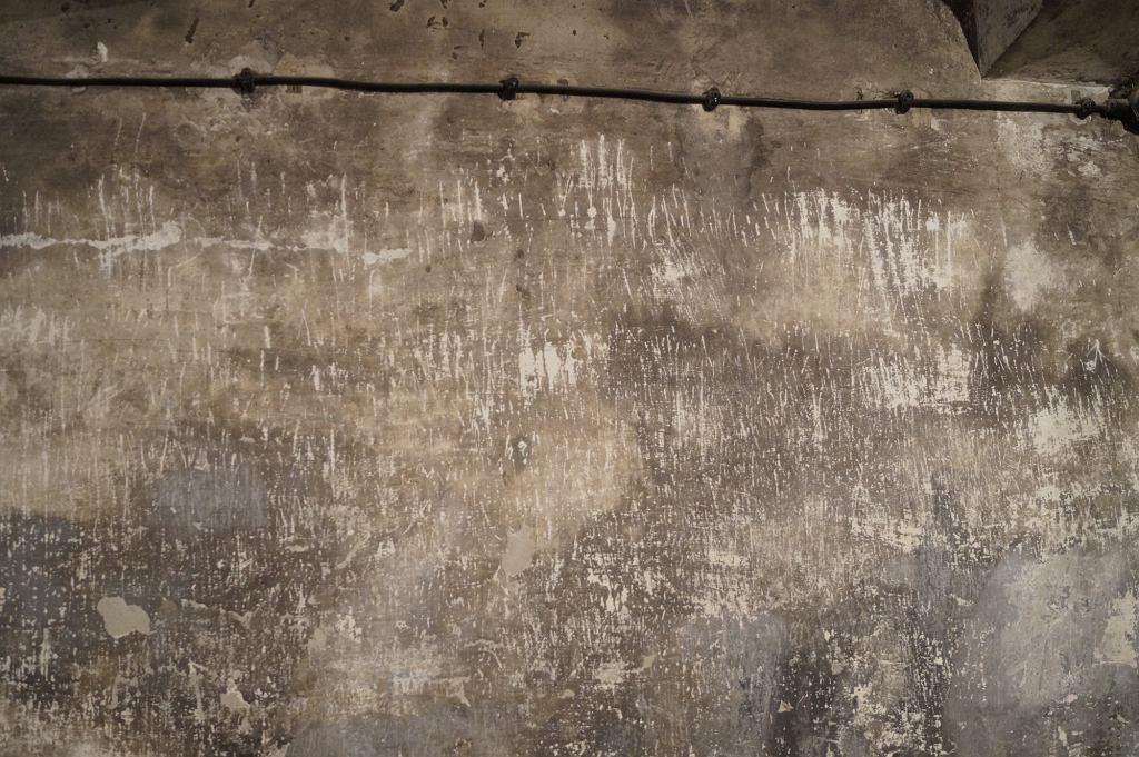 Ściana kostnicy obozowej, przekształconej w komorę gazową - widoczne ślady paznokci zagazowywanych więźniów (fot. flyz1 / Wikimedia.ogr / CC BY-SA 3.0)