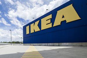 IKEA wycofuje ze sklepów leżak MYSINGSÖ. Może się sam złożyć, gdy na nim siedzisz
