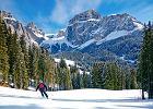 Wybierasz się na narty? Podpowiadamy, jakie zakwaterowanie wybrać + mamy TOP oferty