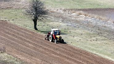 Ziemia uprawna staje się kością niezgody
