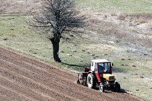 Piraci na traktorach. Naje�d�aj� cudz� ziemi�, orz�, siej� i znikaj�. A potem id� po unijn� dop�at�