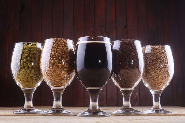 Tajniki złotego napoju: z czego robi się piwo? Czy na pewno wiesz, jakie są składniki piwa?