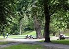 Gdynia przegra�a sp�r z w�a�cicielami cz�ci parku