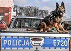 Policja łowi chętnych do pracy na nowe bmw i antyterrorystę [ZDJĘCIA]