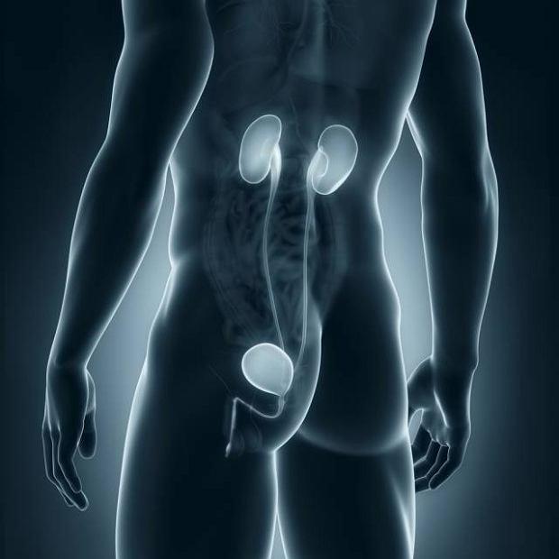 Gruźlica układu moczowego
