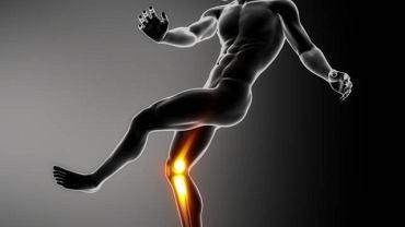 Jałowa martwica kości najczęściej atakuje kości długie tj. piszczele lub kości udowe