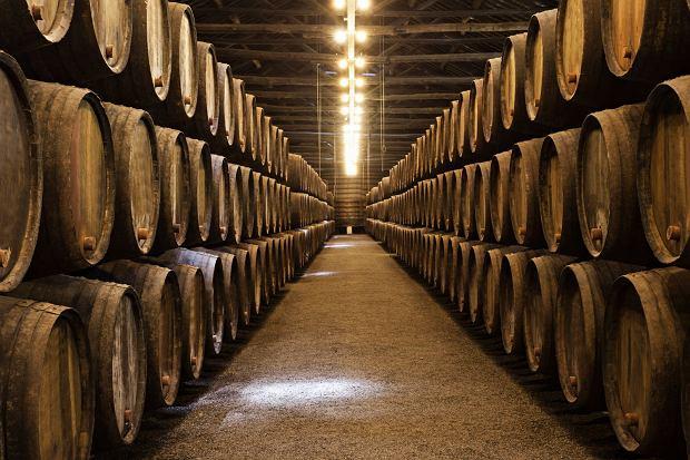 Baryłki z winem w piwnicy, Porto (Portugalia)