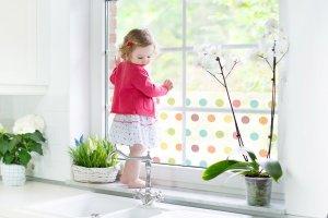 Okna: folia, czyli spos�b na w�cibskich s�siad�w