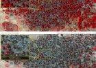 Boko Haram wymordowa�o setki cywil�w - nowe dowody Amnesty International