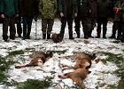 Myśliwi podczas polowania postrzelili mężczyznę. Myśleli, że to dzik. Mężczyzna zmarł