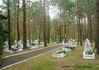 Nawet 300 Polaków w zbiorowej mogile odnalezionej na Wołyniu