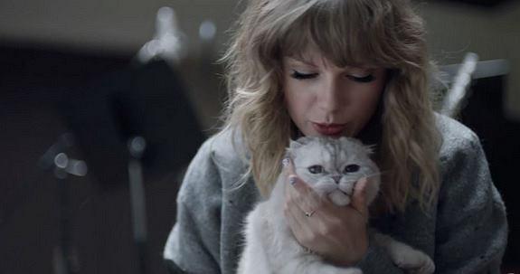 Taylor Swift szpieguje swoich fanów?
