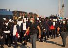 Włoska mafia pasie się na imigrantach