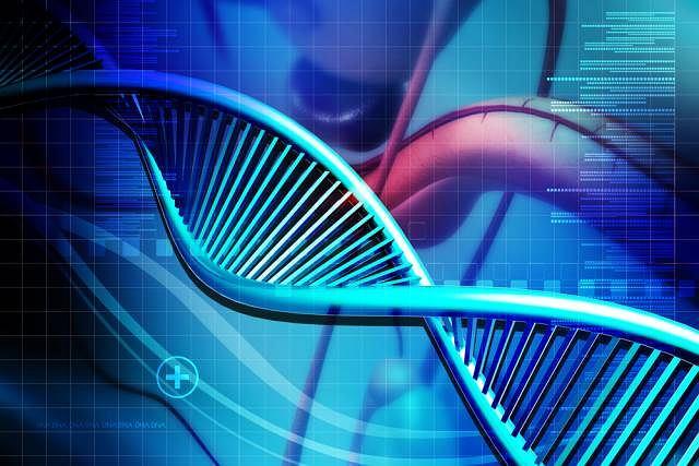 Choroba Gauchera to schorzenie genetyczne zaliczane do chorób spichrzeniowych (odkładających się) charakteryzujących się zaburzeniem funkcji lizosomów (struktury komórkowe odpowiedzialne trawienie i magazynowanie substancji)