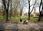 Sejm uchwali� ustaw� wprowadzaj�c� roczny urlop po urodzeniu dziecka