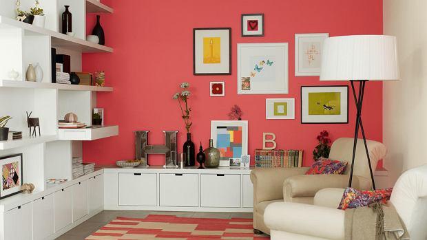 Salon w intensywnych kolorach