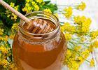 Miód rzepakowy - właściwości zdrowotne i zastosowanie