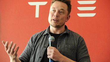 Elon Musk, szef Tesli