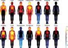 Mapa emocji: gdzie w ciele odczuwamy r�ne emocje?