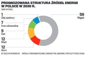 Atom bezpieczny czy nie? Pytanie o elektrowni� atomow� w Polsce