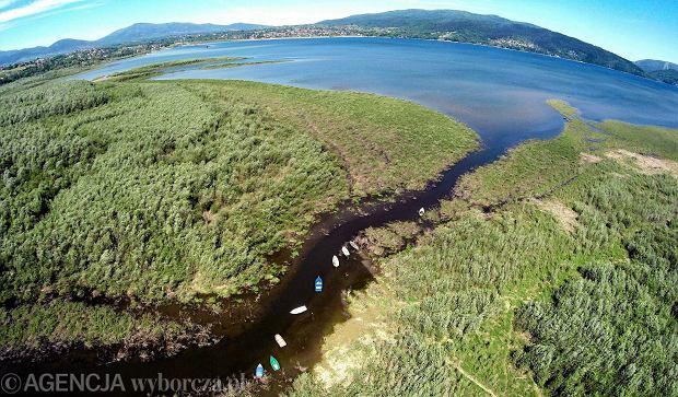 Zdjęcie numer 0 w galerii - Znane jezioro zaczyna przypominać las! To efekt ogromnego zamulenia [ZDJĘCIA Z DRONA]