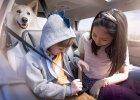 Bezpieczne, praktyczne i przestronne - takie musi być auto rodzinne. Oto kilka propozycji z różnych segmentów