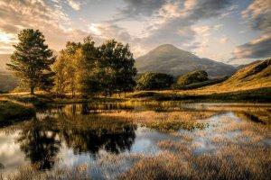 Wyróżnienie w kategorii pejzaż klasyczny wybór jurora Russa O'Conenella - fot. Chris Shepherd - n/z: Stary człowiek i drzewa, Kelly Hall Tarn, Cumbria, Anglia
