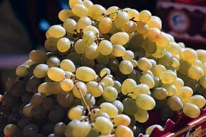 S�owacja: p� roku wi�zienia dla emeryta za kradzie�... trzech winogron