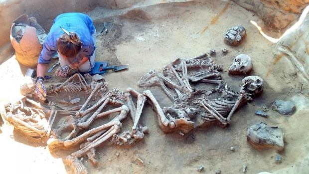 Archeolodzy z Wroc�awia odkryli gr�b sprzed tysi�cy lat przy drodze ekspresowej