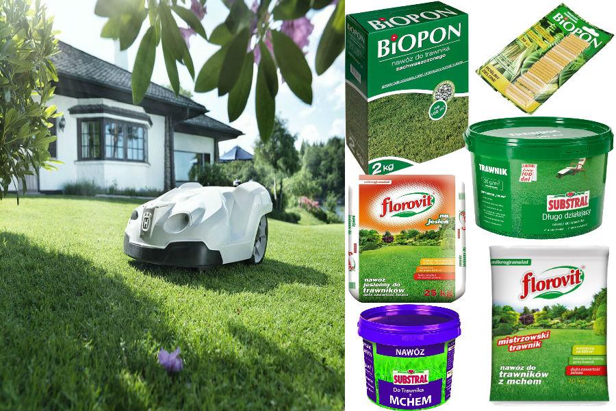 Prace w ogrodzie - kiedy zakładać trawnik? Jaką trawę wybrać?
