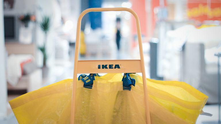 Od teraz w IKEA będą dostępne również akcesoria dla zwierząt