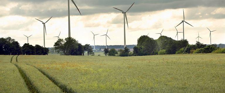 Amerykanie chcą od Polski 700 mln dolarów odszkodowania. Gigant energii odnawialnej idzie do sądu