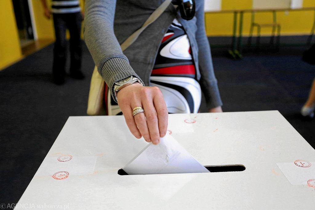 Urna wyborcza [zdjęcie ilustracyjne]